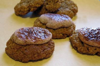 graham-cracker-cookies-3