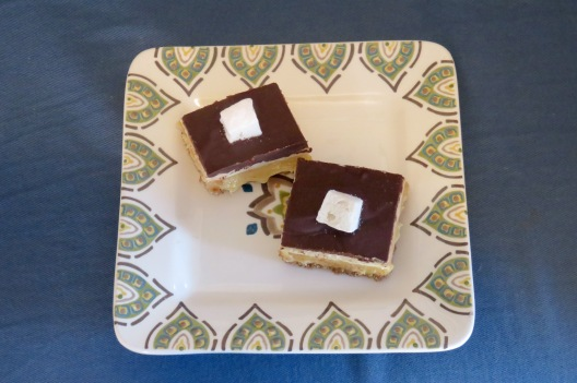 millionaire's biscoff s'mores bars (3)